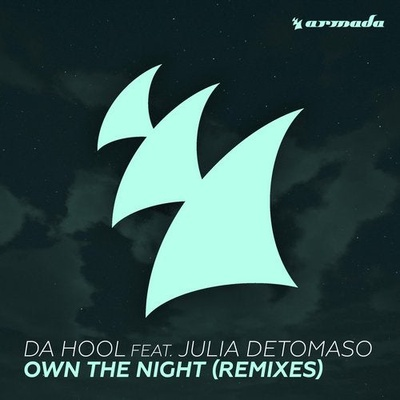 Own The Night - Remixes